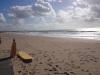13.Surf_
