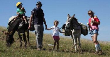 Altratoscana - Bezoek Toscane op een originele manier per ezel