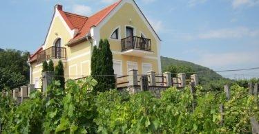 Villa Tibor - Logeren bij Belgen in Hongarije
