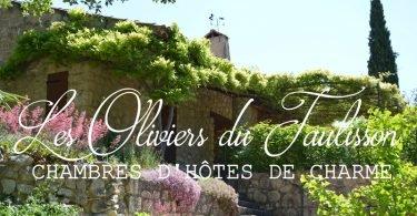 Les Oliviers du Taulisson - Logeren bij Belgen in Frankrijk