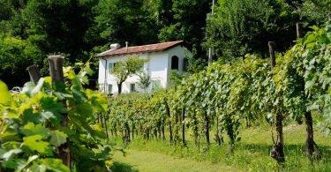 Casa Vigna - Logeren bij Taalgenoten in Italië