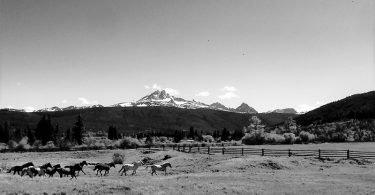 Elkin Creek Ranch - Logeren bij Belgen in Canada