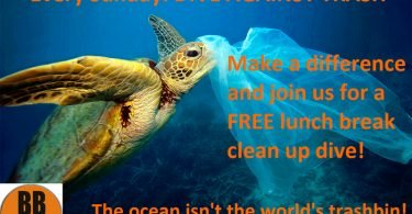 BB Divers Dive Against Trash